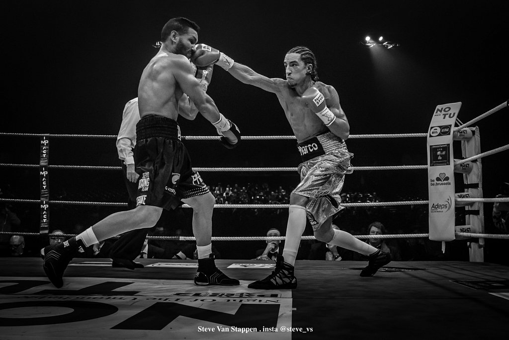 boxe-16-STEVE-VAN-STAPPEN-copyright-exclusive-rightjpgjpg.jpg